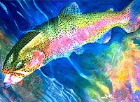 Click image for larger version.  Name:rainbow-trout.jpg Views:457 Size:214.4 KB ID:9880