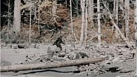 Click image for larger version.  Name:bigfoot-roger-patterson-1_h.jpg Views:32 Size:124.7 KB ID:12848