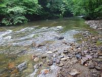 Click image for larger version.  Name:Restored upper reach looking upstream.jpg Views:161 Size:304.1 KB ID:11810