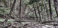Click image for larger version.  Name:delaware water gap - Dunfield Creek.jpg Views:220 Size:165.8 KB ID:11936
