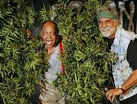 Click image for larger version.  Name:Cheech and Chong.jpg Views:181 Size:49.7 KB ID:11945