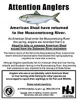 Click image for larger version.  Name:Musconetcong R shad sign 3-9-18.jpg Views:144 Size:418.4 KB ID:12711