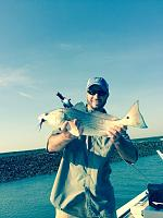 Click image for larger version.  Name:Redfish.jpg Views:268 Size:140.2 KB ID:10727